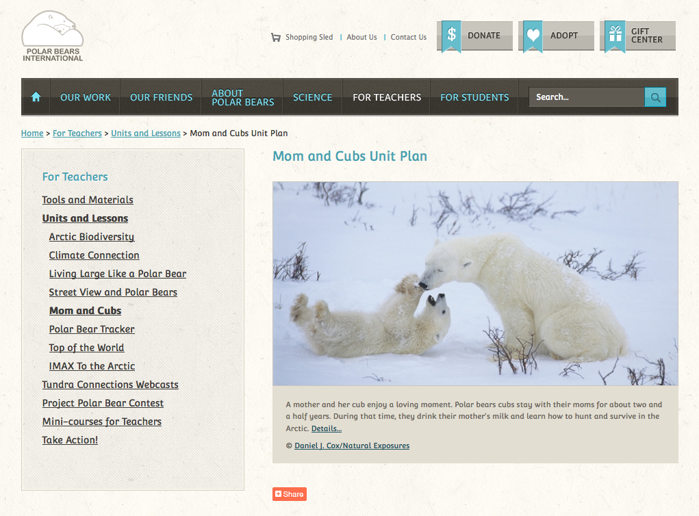 http://www.polarbearsinternational.org/units-and-lessons/mom-and-cubs-unit-plan