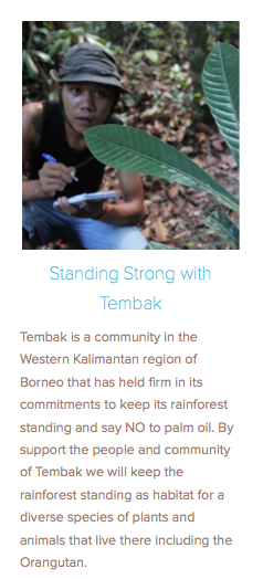 https://rainforestconnections.org/projects/StandingStrongwithTembak