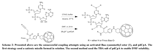 Text Box:  