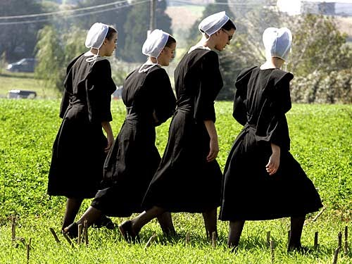 the amish subculture