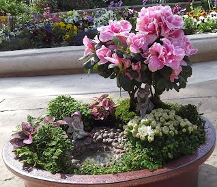 Bonsai Gardens The AudreyGrace Place