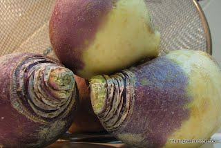rutabaga not a turnip not a parsnip