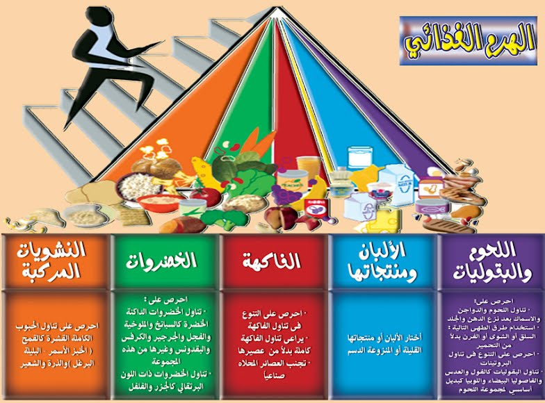 ������ ����� ������� ����� ,food pyramid with lots of items haram1.jpg?height=58