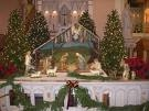 Decorations around Christmas time include flowers that are picked from the gardens. Huge Christmas trees can be seen throughout the major cities.