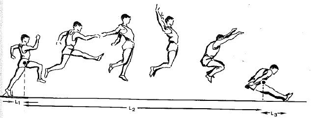 The Science Of Long Jumping The Long Jump