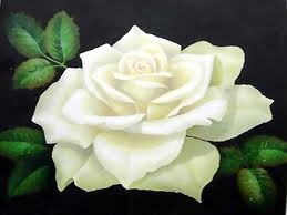 What Do White Roses Represent The Symbolism Of A Rose