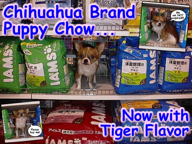 From TigerSan's PhotoBlog: Chihuahua Brand Puppy Chow... Now with Tiger Flavor: Me am not expired: Please Buy Me.