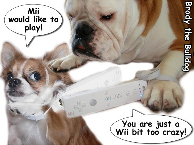From TigerSan's PhotoBlog: Mii would like to play. You are just a Wii bit too crazy.