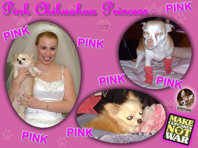 From TigerSan's PhotoBlog: Pink Chihuahua Princess
