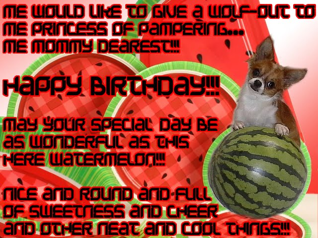 From TigerSan's PhotoBlog: Me would like to give a wolf-out to me PRINCESS OF PAMPERING... ME mommy dearest!!! HAPPY BIRTHDAY!!! May your special day be as wonderful as this here watermelon!!! Nice and round and full of sweetness and cheer and other neat and cool things!!!