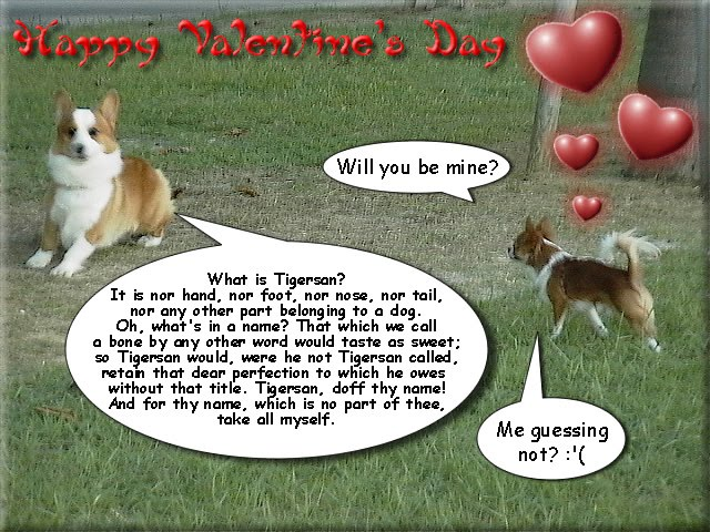 From TigerSan's PhotoBlog: Will you be mine? What is Tigersan? It is nor hand, nor foot, nor nose, nor tail, nor any other part belonging to a dog. Oh, what's in a name? That which we call a bone by any other word would taste as sweet; so Tigersan would, were he not Tigersan called, retain that dear perfection to which he owes without that title. Tigersan, doff thy name! And for thy name, which is no part of thee, take all myself. Me guessing not? :'(