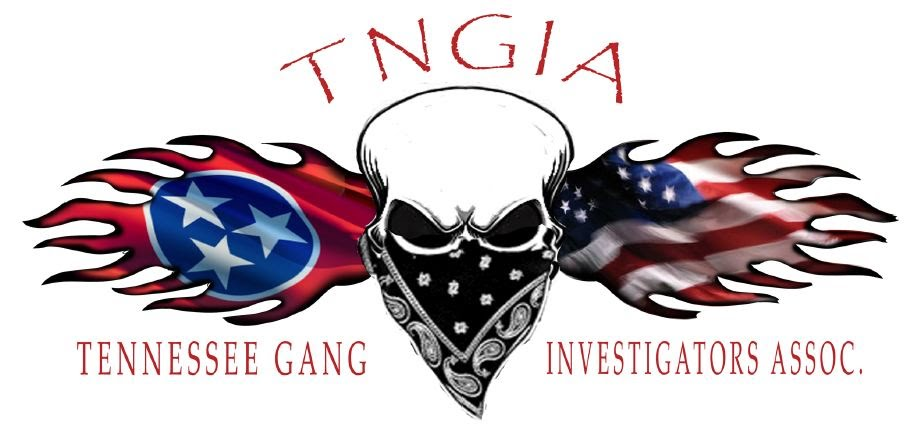TNGIA Skull-Flags_Logo