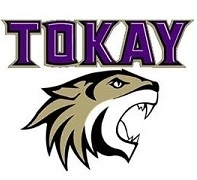 Tokay Home Page Home Review