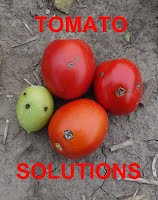 Tomato Solutions
