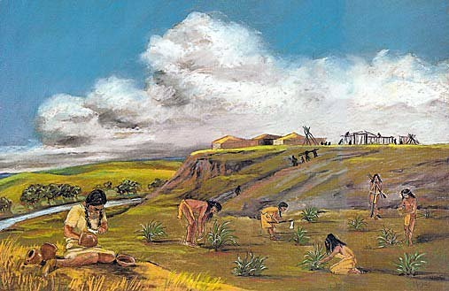 Native American agriculture in Virginia