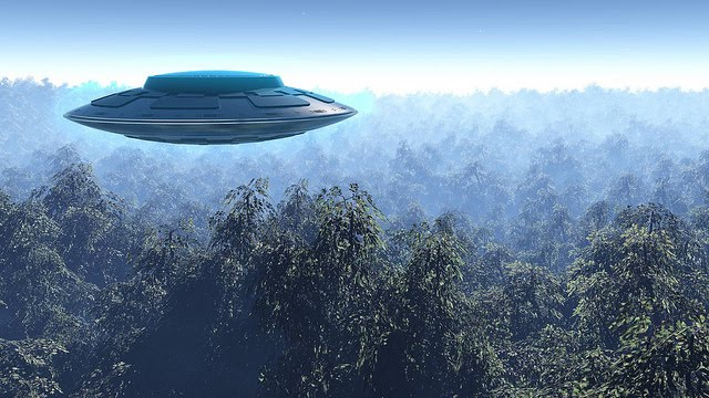 UFO over Forest art