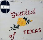 Nose Art  - Sweetest Of Texas