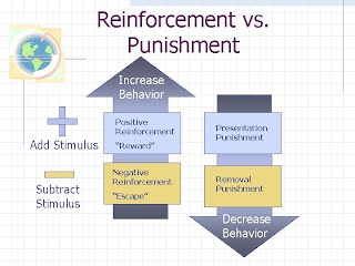 Image result for reinforcers and punishers