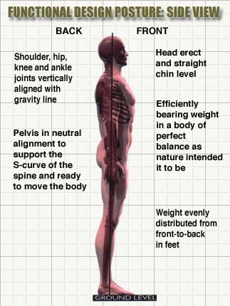 How to stand in correct posture avoid backache and neck pain, Bones Muscles joints