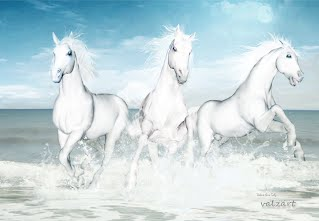 http://valerie-anne-kelly.pixels.com/featured/horses-of-the-camargue-valerie-anne-kelly.html