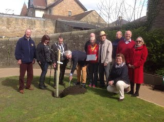 Planting Apple Tree - donated by Rotary Club of Ambt Almelo Holland May 2015