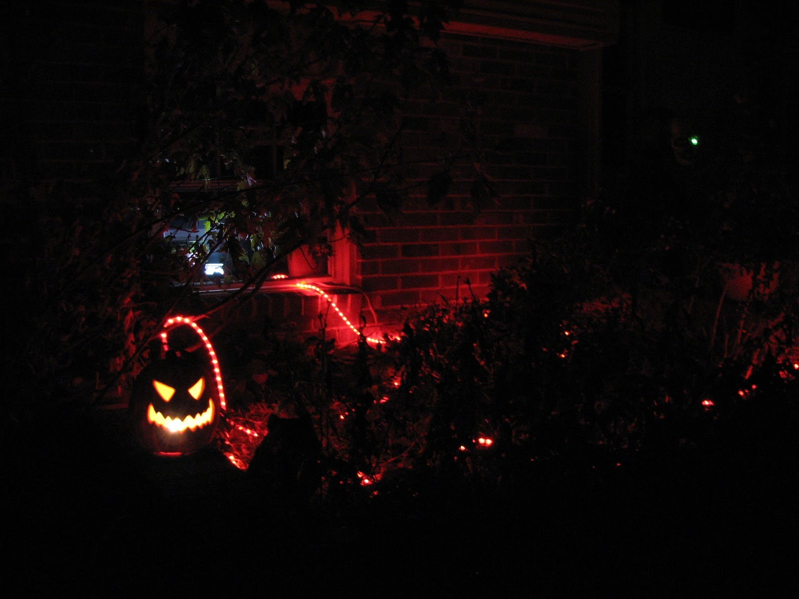https://sites.google.com/site/vervemonkeyproject/Home/images/web-images/House_Halloween_2011.jpg