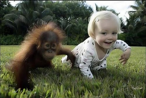 https://sites.google.com/site/vervemonkeyproject/Home/images/web-images/baby_monkey_with_baby.jpg