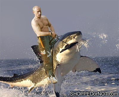 https://sites.google.com/site/vervemonkeyproject/Home/images/web-images/man-riding-shark.png