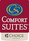https://www.choicehotels.com/new-york/vestal/comfort-suites-hotels/ny384