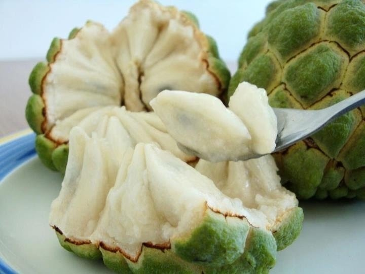 Image Gallery sweetsop fruit