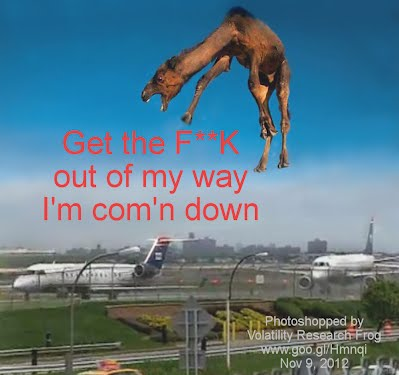After Burner the Flying Camel trying to land at LaGuardia