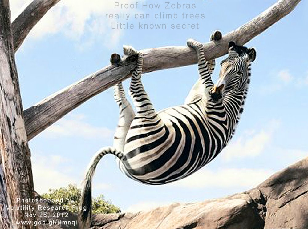 Proof How Zebras really can climb trees Little known secret
