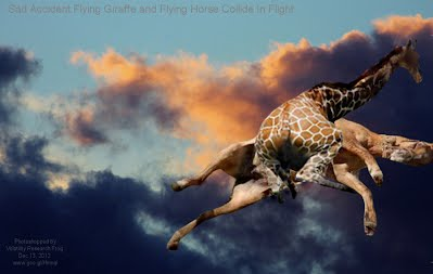 Dec 13, 2012  Sad Accident Flying Giraffe and Flying Horse Collide In Flight