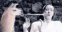 "Bullseye the Hocker Shooting Llama lands a big wet one on a nice lady, blackballed, ""He's just too aimless."""