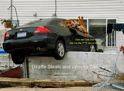 Dec 14, 2012  Giraffe Steals and Wrecks Car