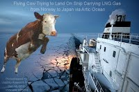 Flying Cow Trying to Land On Ship Carrying LNG Gas from Norway to Japan via Artic Ocean