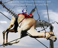Flying Camel and Robot Pilot Killed in Crash Knocking Down Power Lines and Pole