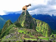 Flying Giraffe Barely Landing On Mountain Top (Volatility Research) 1000w