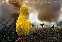 Big Bird Watching Mexican Military Burning Pot (Volatility Research) 1000w