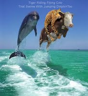 Tiger Riding Flying Cow That Swims With Jumping Dolphin Too (Volatility Research) 1000w