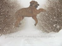Flying French Sheepdog In Snow Storm (Volatility Research) 1000w