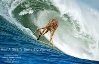 How A Giraffe Surfs Big Waves (Volatility Research) 1000w