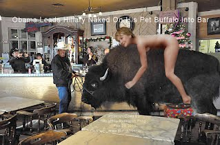 Obama Leads Hillary Naked On His Pet Buffalo Into Bar (Volatility Research) 1000w