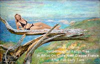 Hillary Clinton Sunbathing On Fallen Tree In Bikini On Cliffs Near Dieppe France After Full Body Tuck (Volatility Research) 1000w
