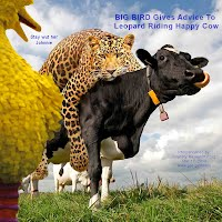 So God Made a Farmer — BIG BIRD Gives Advice To Leopard Riding Happy Cow (Volatility Research) 1000w