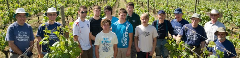 Volunteers and students at Warden Abbey Vineyard