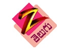 WATCH ZEE TELGU TV CHANNEL ONLINE LIVE
