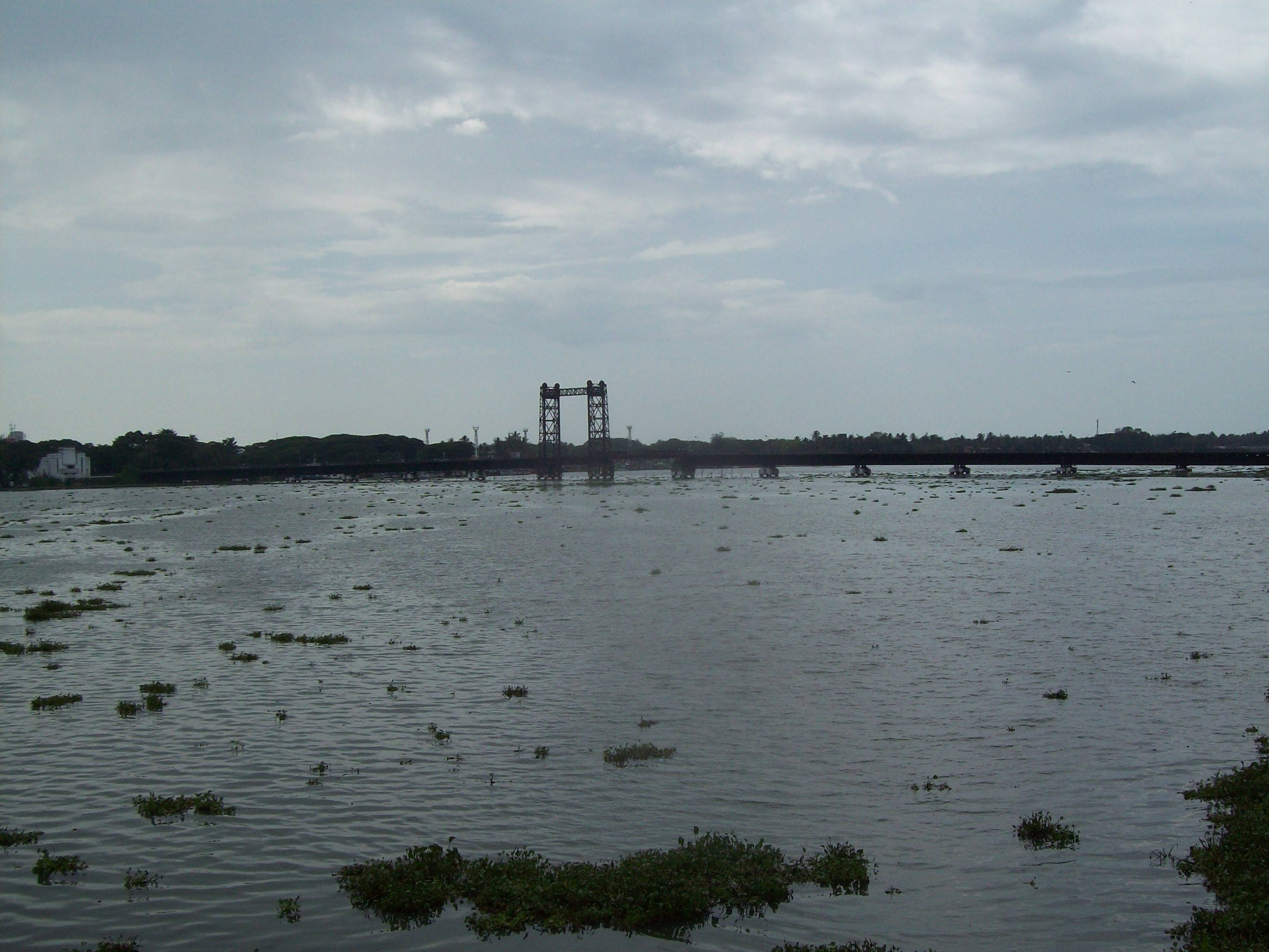Bridge to Kochi