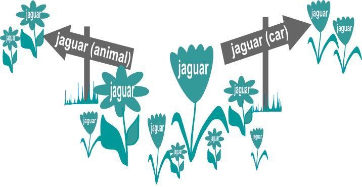 Tag garden with nicely arranged flower beds aka collection of synonyms and division of homonyms
