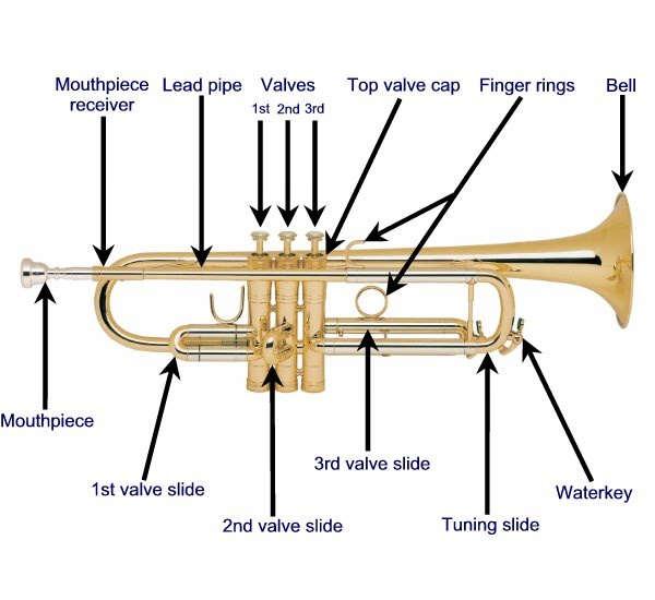 Process Trumpet - What is your instrument all about?
